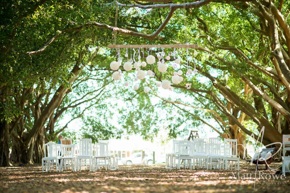 Wirreanda Park in Buderim - one of my favourites for gorgeous romantic wedding ceremonies